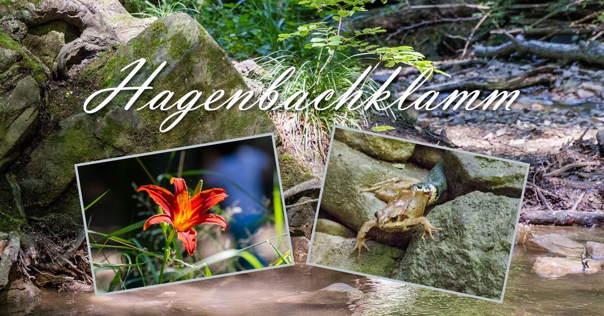 Impressionen von der Hagenbachklamm