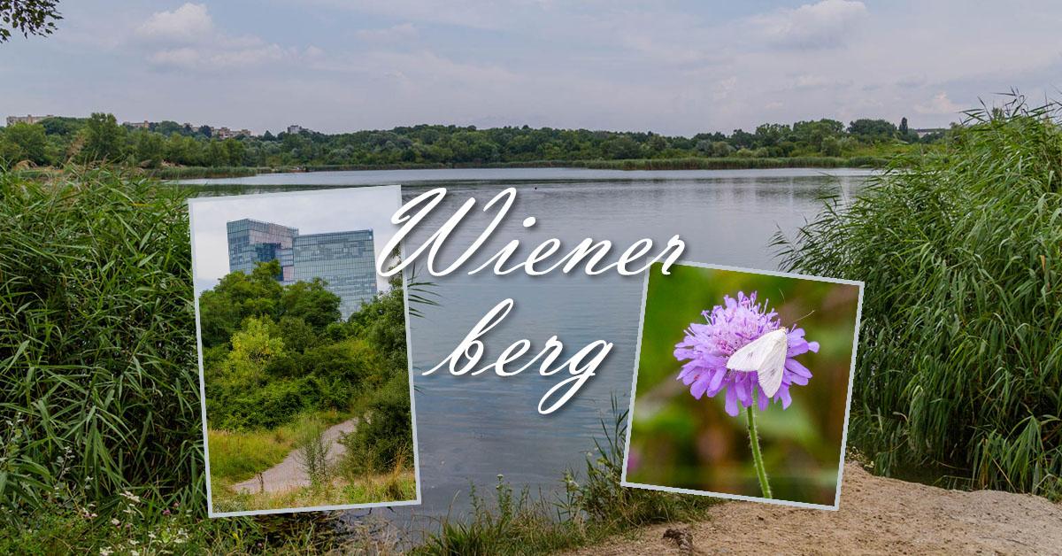 Impressionen vom Erholungsgebiet Wienerberg