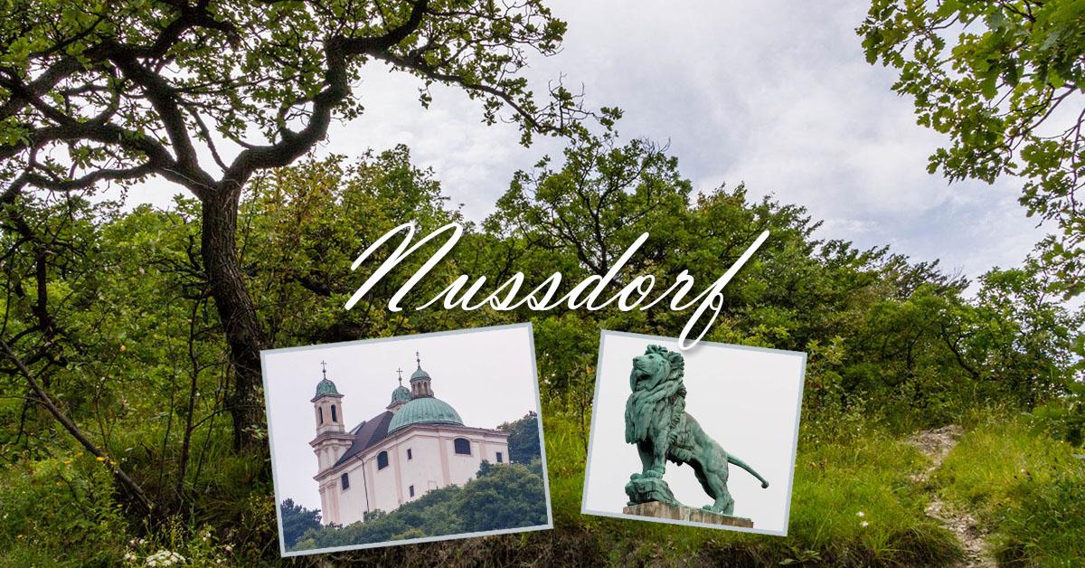 Impressionen von Nussdorf